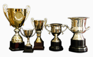 Trophies for the Sidecar Racing Club Presentation Afternoon