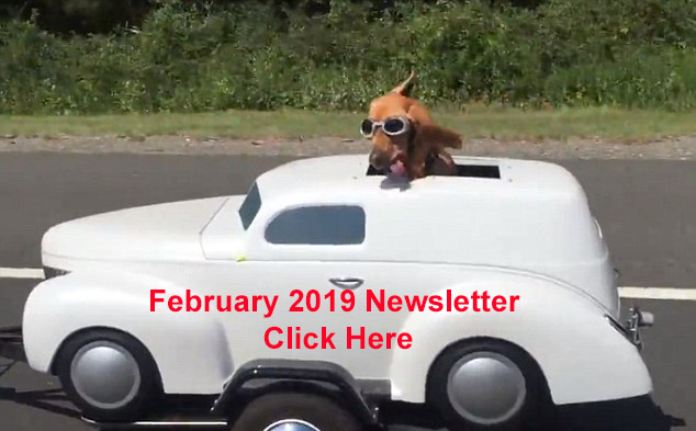 Dog In Sidecar Image